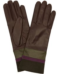 Portolano - Nappa Leather Three-tone Colour-blocked Gloves - Lyst