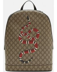 Lyst - Gucci Kingsnake Print Leather Backpack in Black for Men b3a6100d8b