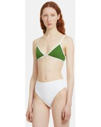 ELLISS - Cactus Triangle Bra In Green - Lyst