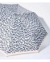 LOFT - Leopard Print Umbrella - Lyst