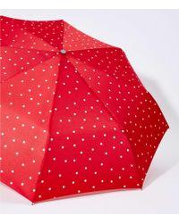 LOFT - Dotted Umbrella - Lyst