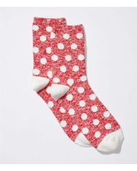 LOFT - Polka Dot Crew Socks - Lyst