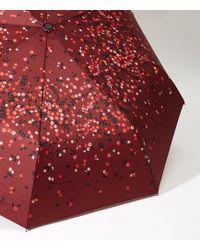 LOFT - Berry Umbrella - Lyst