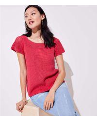 LOFT - Pointelle Flare Sleeve Sweater - Lyst