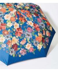 LOFT - Sun Umbrella - Lyst