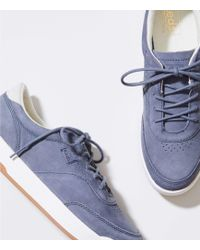 LOFT - Keds Match Point Nubuck Trainers - Lyst