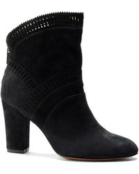 Isola - Evoda Lasercut Suede Ankle Boots - Lyst