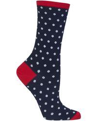 Hot Sox - Holiday Polka Dot Socks - Lyst