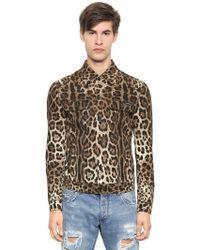 Dolce & Gabbana - Leo Print Stretch Cotton Drill Jacket - Lyst
