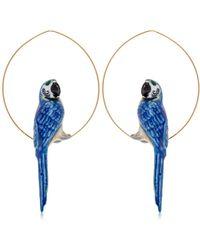 """Nach - Orecchini """"blue Parrot"""" - Lyst"""