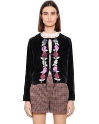 Blugirl Blumarine - Floral Embroidered Velvet Jacket - Lyst