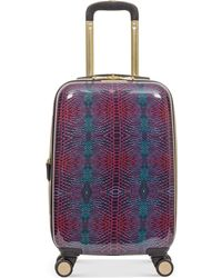 """Aimee Kestenberg - Ivy 20"""" Carry-on Expandable Hardside Spinner Suitcase - Lyst"""