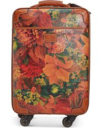 "Patricia Nash | Livorno 24"" Heritage Signature Trolley Rolling Luggage 