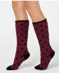 Charter Club - Polka Dot Socks, Created For Macy's - Lyst