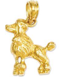 Macy's - 14k Gold Charm, Poodle Dog Charm - Lyst