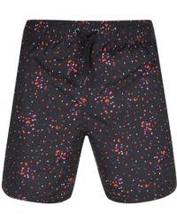 Pretty Green - Owlsey Dot Print Swim Shorts Black - Lyst