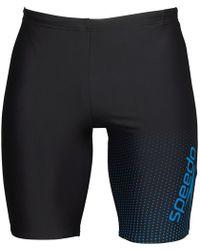 Speedo - Gala Logo Jammer Shorts Black/blue - Lyst