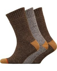 Weatherproof - Three Pack Thermal Crew Socks Medium Brown - Lyst
