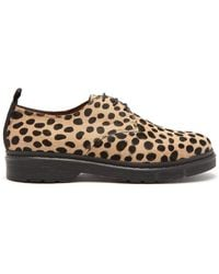 JOSEPH - Leopard Printed Calf Hair Derby Shoes - Lyst