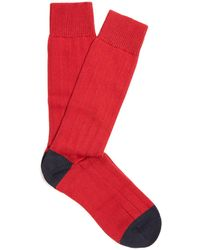 Pantherella - Scott Nichol Oxford Ribbed-knit Socks - Lyst
