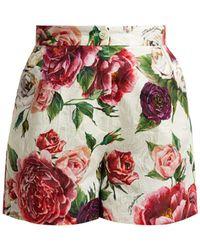 Dolce & Gabbana - Floral-print Cotton-blend Jacquard Shorts - Lyst