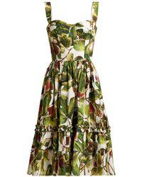 Dolce & Gabbana - Fig-print Cotton Bustier Dress - Lyst
