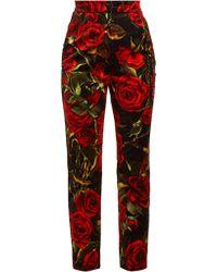 Dolce & Gabbana - Rose Print Velvet Trousers - Lyst