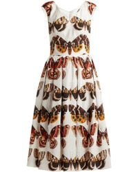 Dolce & Gabbana Butterfly Print Pleated Cotton Dress
