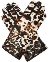 Bottega Veneta - Gants en cuir à imprimé léopard façon poulain - Lyst