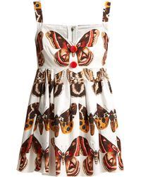Dolce & Gabbana - Butterfly Print Cotton Top - Lyst