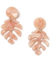Miss Selfridge - Pink Cheeseplant Earrings - Lyst