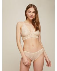 Miss Selfridge - Lepel London Lace Sophia Brazillian Briefs - Lyst