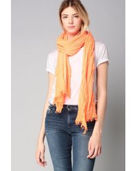 Polo Ralph Lauren - Cheche Scarve - Lyst