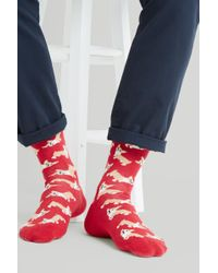 Moss London - Red With Corgi Socks - Lyst