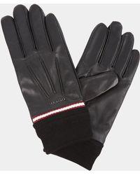 Ted Baker - Dockers Black Webbing Gloves - Lyst