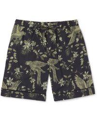 Desmond & Dempsey | Printed Cotton Pyjama Shorts | Lyst
