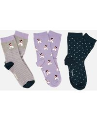 Barbour - Terrier Sock Gift Box - Lyst