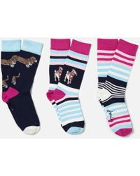 Joules - Brilliant Bamboo 3 Pack Sock Set - Lyst