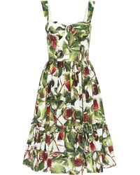 e836d7a0 Dolce & Gabbana Fig Print Off-the-shoulder Cotton Dress in Green - Lyst