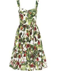Dolce & Gabbana - Vestido de popelín de algodón Fig - Lyst
