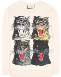 Gucci - Printed Cotton Sweatshirt - Lyst