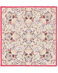 Alexander McQueen - Butterfly Print Wool-blend Scarf - Lyst