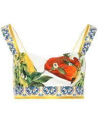 Dolce & Gabbana Bralette a stampa in cotone