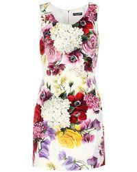 Scopri Abbigliamento da donna di Dolce   Gabbana a partire da 135 € 7aec276faed