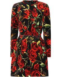 Dolce & Gabbana - Floral-printed Velvet Minidress - Lyst