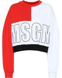 MSGM - Logo Printed Cotton Sweatshirt - Lyst