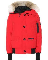 Canada Goose - Chilliwack Fur-trimmed Down Jacket - Lyst