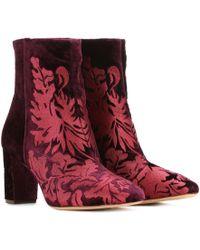 Alexandre Birman - Regina Embroidered Velvet Ankle Boots - Lyst