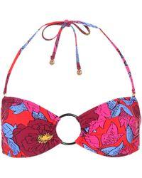 Diane von Furstenberg - Floral-printed Bikini Top - Lyst