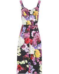 Dolce & Gabbana - Floral Cotton-blend Dress - Lyst